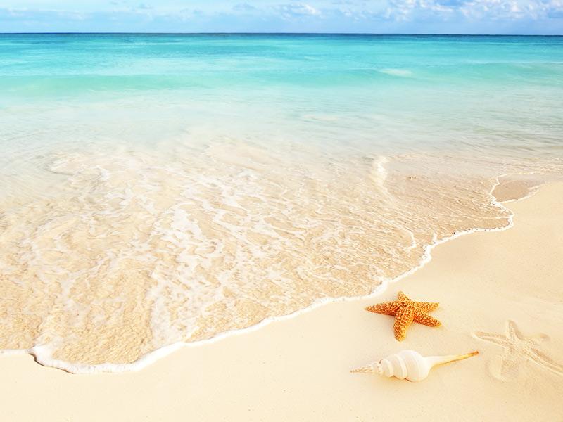 Ocean Spa Hotel All-Inclusive Vacation